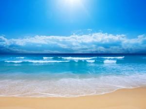 beach-paradise-300x225